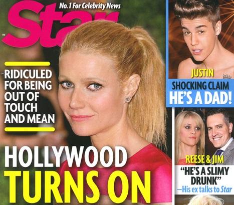 Hollywood-Hating-on-Gwyneth-Paltrow-529-2