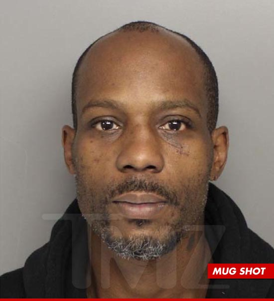 DMX Arrested Again-726-1
