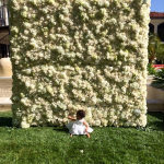 Kim-kardashian-wall-roses-0510-3