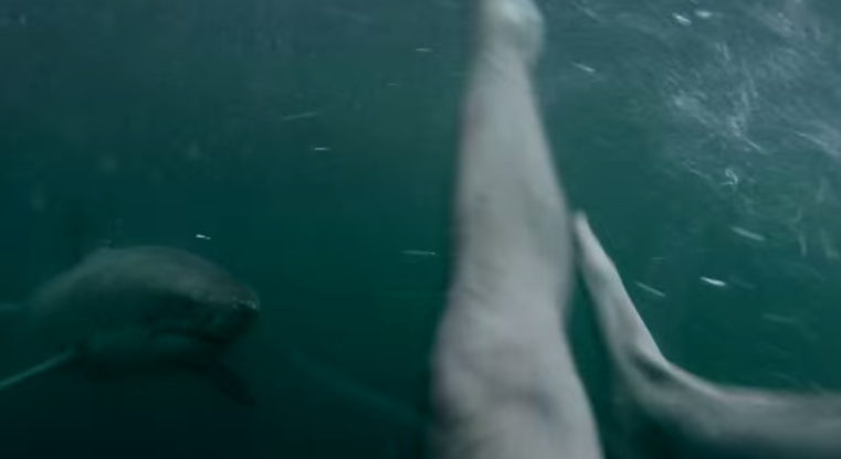 Man-Fights-Off-Great-White-Shark-0612-2