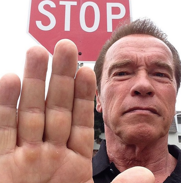 arnold-schwarzenegger-is-the-ceo-of-celebrity-apprentice-0915-1