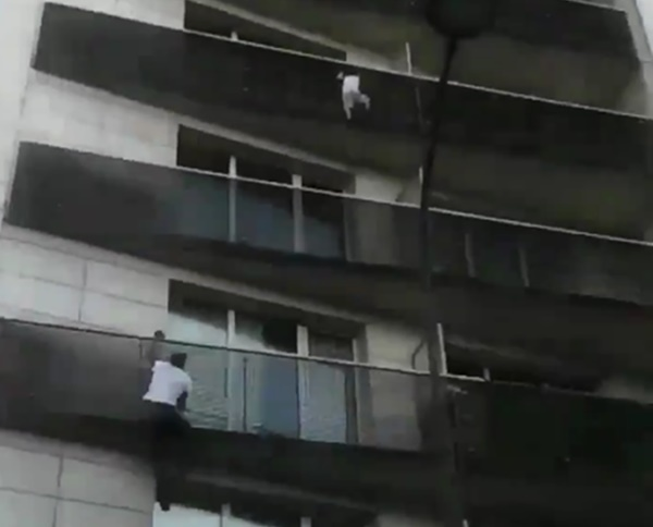 Real Life Spiderman is a TRUE HERO