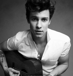 Victoria Secret Fashion Show TAPS Shawn Mendes