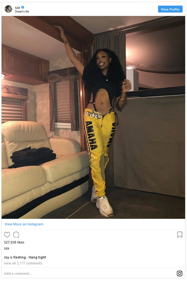 SZA Posts Absurd Captions; What's Going On