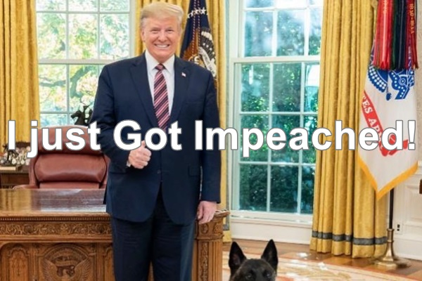 President Trump Impeached By The House